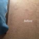 Bedroom-Carpet-Cleaning-Danville-A