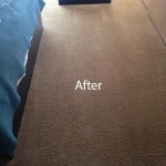 Bedroom-Carpet-Cleaning-Danville-B