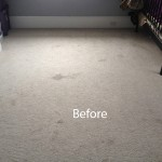Bedroom-Wall-to-Wall-Carpet-Cleaning-Danville-A