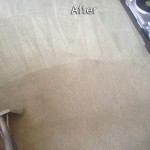 Danville-Carpet-Cleaning-Company