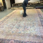 Danville-Professional-Rug-Cleaning