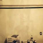 Danville-mold-damage