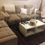 Salon-Upholstery-Cleaning-Danville