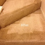Stairs-Carpet-Cleaning-Danville-B